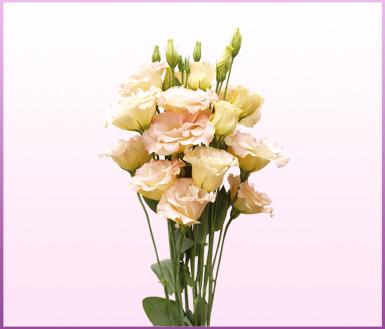 香槟塔鲜花点缀图片